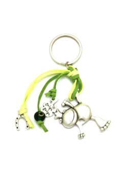 keyring with frog & horseshoe