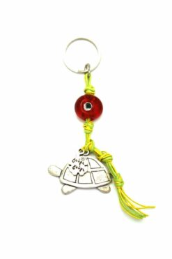 keyring with turtle and evil eye